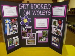 June African Violets 019